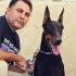خالد-محمد-حسن-فاضل-الكلاب-العراق-جيرمن-شيبرد
