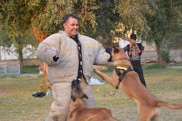مدرب الكلاب العراقي خالد محمد حسن فاضل