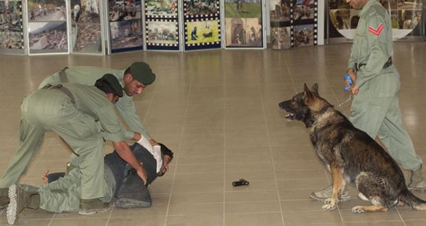 دبي: كلب بوليسي يكتشف جثة متحللة من 15 عاماً