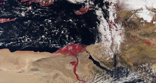ظهور نهر النيل باللون الأحمر في مصر