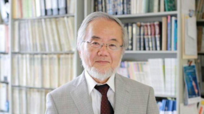 """فوز عالم ياباني بجائزة نوبل في الطب بفضل أبحاثه في """"التدمير الذاتي"""" للخلايا"""