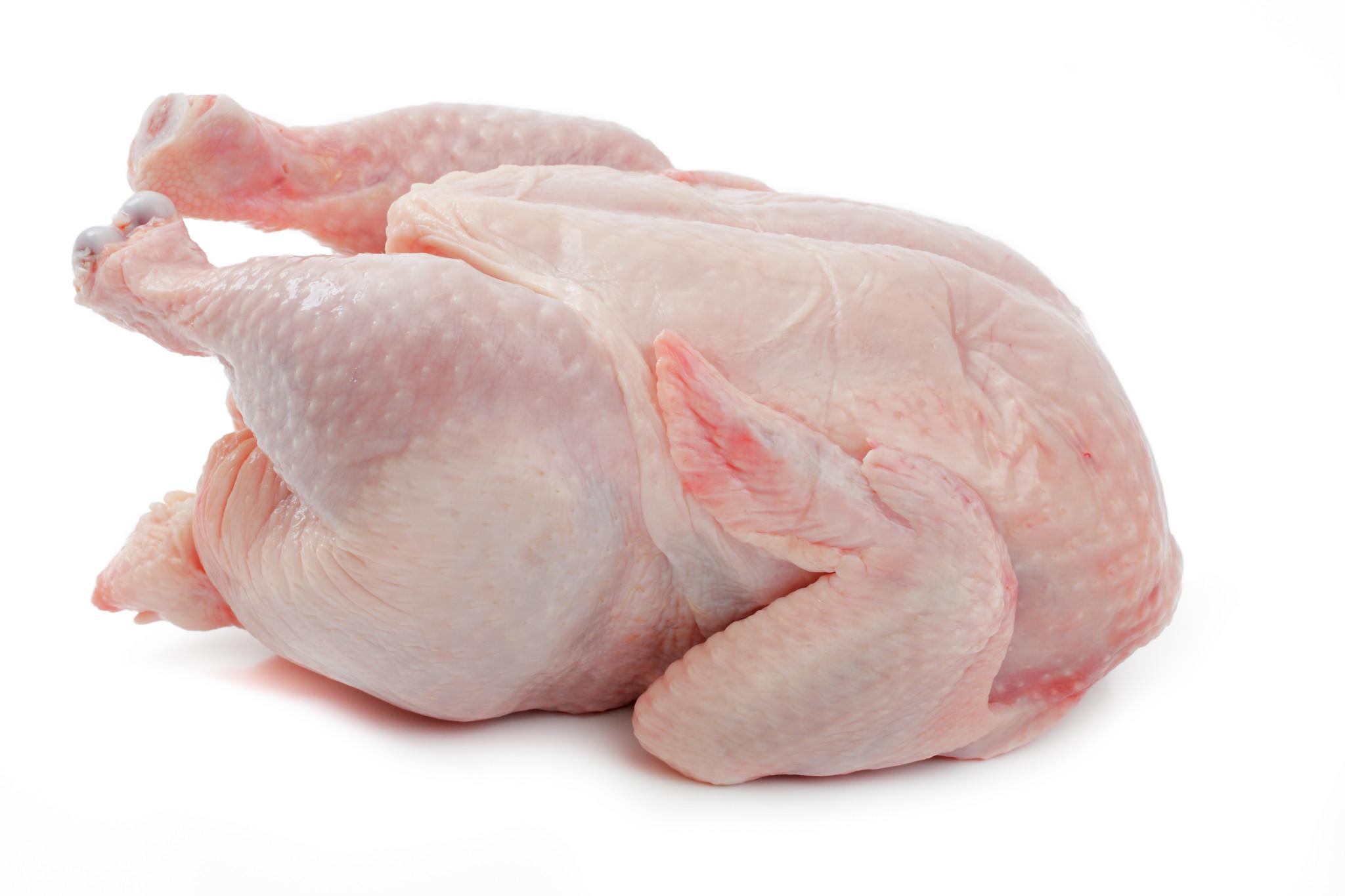 وزارة الزراعة تكشف  مصدر فيروس أنفلونزا الطيور { H5N8} في العراق وظهوره في محافظة صلاح الدين