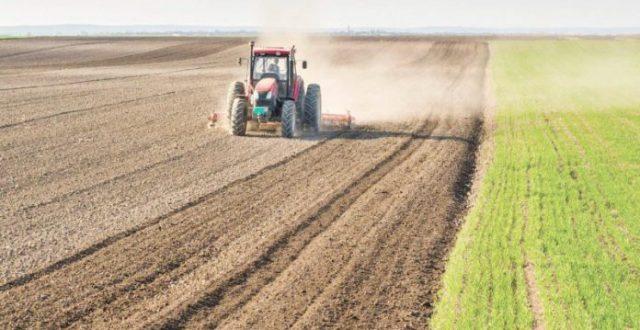 وزارة الزراعة:منع إستيراد 22 منتجاً نباتياً وحيوانياً لوفرته محلياً
