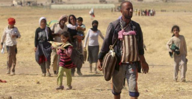 دخول 21 ايزيديا مختطفا لدى داعش الى سنجار