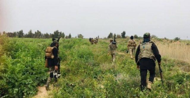 عملية أمنية مشتركة جنوب صلاح الدين