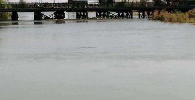 خلية مواجهة السيول تعلن الموقف المائي لغاية اليوم السبت