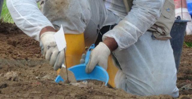 رفع رفات 14 ايزيدياً من مقبرة جماعية في سنجار