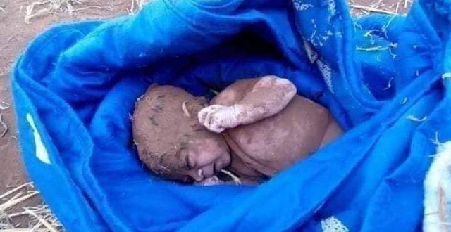 بالصور: راعي اغنام ينقذ طفلة حديثة الولادة بعد دفنها محاولة لقتلها
