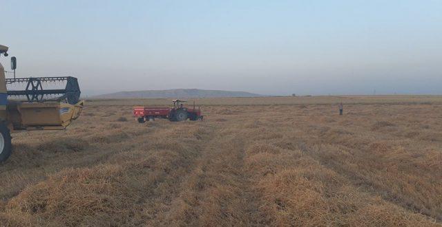 استشهاد 4 مزارعين بهجوم لعصابات داعش على حقولهم في صلاح الدين