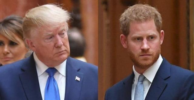 ترامب يكشف رأيه في الأمير هاري.. وينفي إهانة ميغان