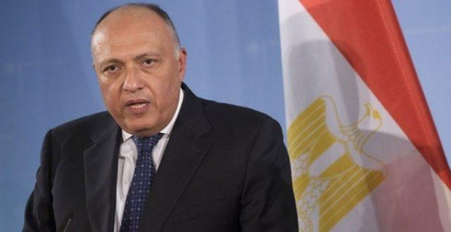 """وزير الخارجية المصري: العملية التركية في سوريا """"احتلال"""""""