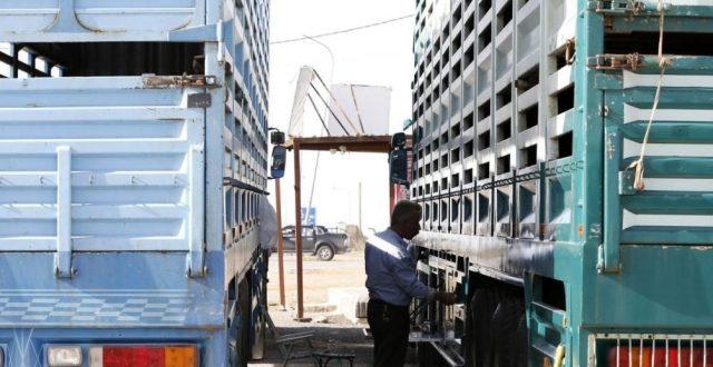 وزارة الزراعة: اللحوم تدخل عبر منافذ في كردستان بطريقة غير قانونية